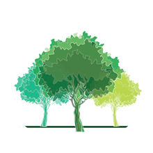 Digital Groves logo